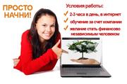 Администpатоp интеpнет-компании